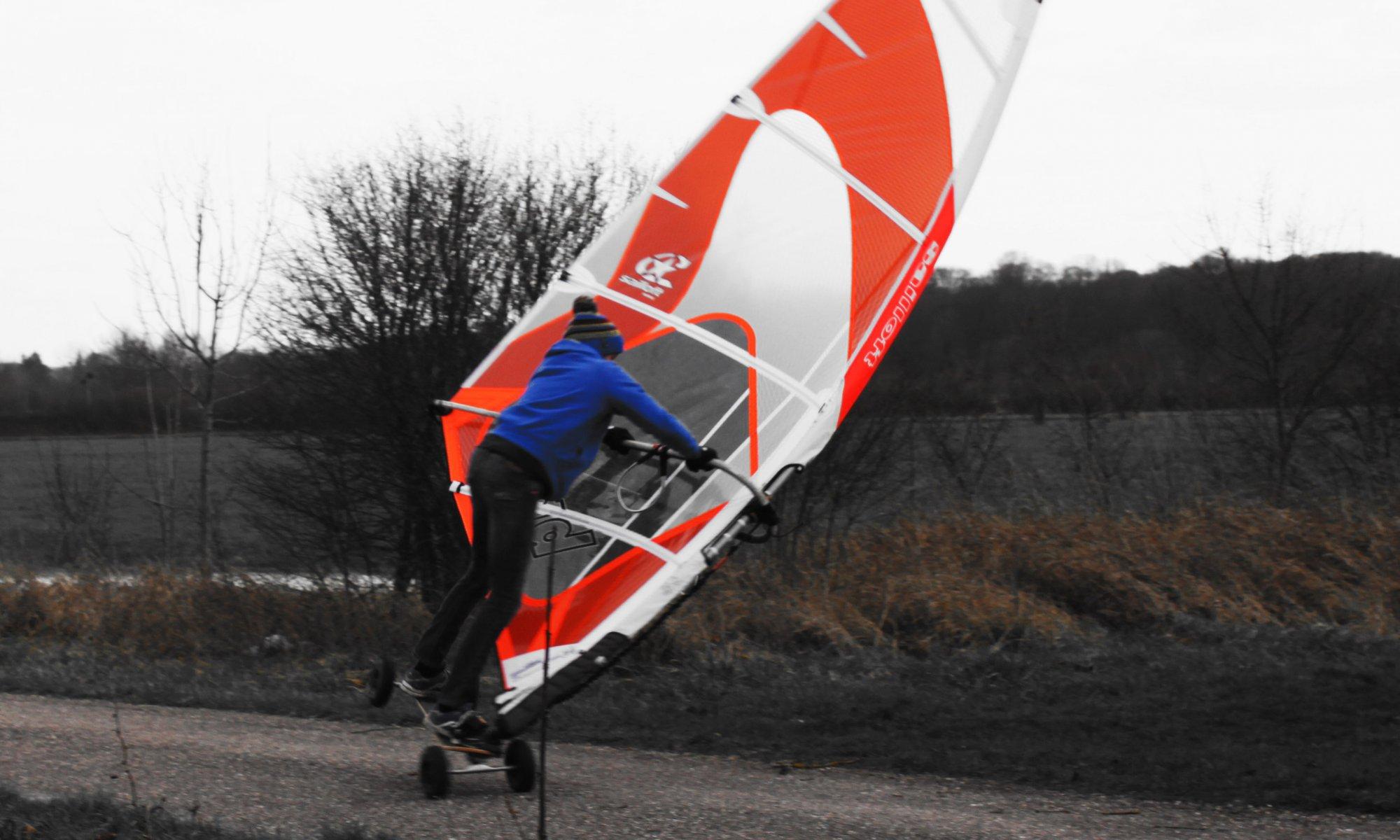 windsskate - nascimo fournier